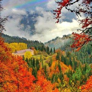 Осень в Боржоми