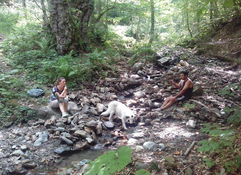Короткий отдых у горного ручья
